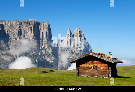 Mountain hut, Schlern Massif or Sciliar Massif, Schlern or Sciliar, Seiser Alm or Alpe di Siusi, high alpine pasture - Stock Photo
