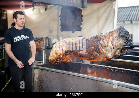 Man roasting whole pig on a spit - Stock Photo