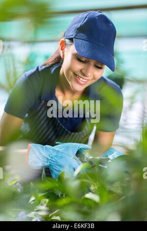 smiling female gardener working in greenhouse - Stock Photo
