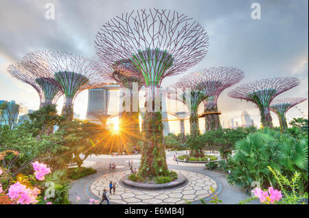 The Gardens by the Bay with the Marina Bay Sands Background - Stock Photo