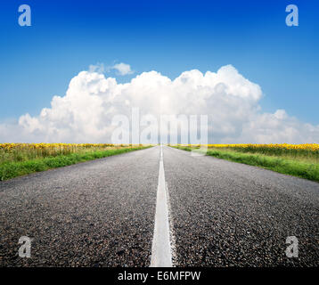 Highway through the field of sunflowers and blue sky - Stock Photo