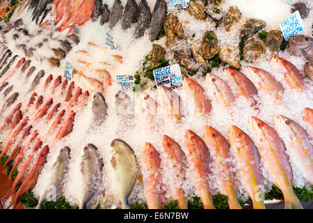 Variety of fresh fish on ice from around the world for sale in N & A fish shop Walthamstow High Street London UK - Stock Photo