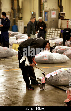 Tuna auction at Tsukiji fish market, Tokyo, Japan, Asia, the largest wholesale seafood market in the world. People, - Stock Photo