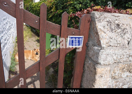 'Attention au chien' - French 'beware of the dog' sign on gate with dog visible through gate - Stock Photo