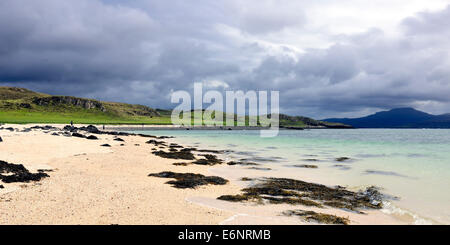 Seaweed on 'Coral Beach' in North West Skye, Scotland - Stock Photo