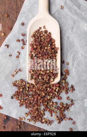 Sichuan pepper or Szechuan pepper (Zanthoxylum piperitum) - Stock Photo