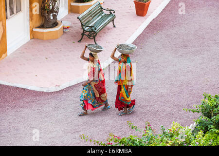 Women in brightly coloured saris working, carrying concrete on their heads, Deogarh Mahal Hotel in Deogarh, Rajasthan, - Stock Photo