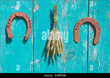 wheat bunch and two horseshoe luck symbol on old green wooden barn wall - Stock Photo