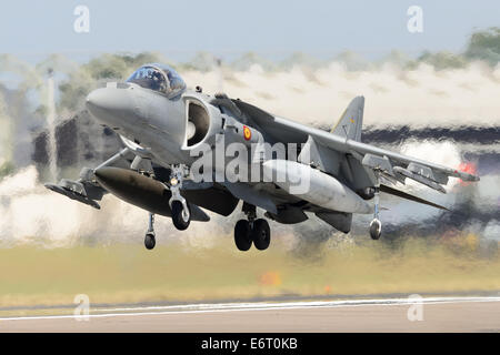 A Spanish Air Force McDonnell Douglas EAV-8B Matador hovering over runway, with heat haze below. - Stock Photo