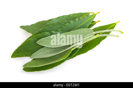 Laurel and sage leaves isolated on white - Stock Photo
