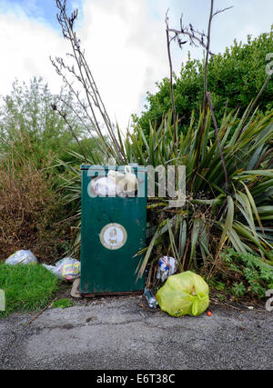 Overflowing waste bin with rubbish strewn around in a public park in Blackpool, Lancashire - Stock Photo