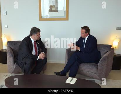 Brussels, Belgium. 30th Aug, 2014. Ukrainian president Petro Poroshenko (L) and British prime minister David Cameron meet for talks. Credit:  Mykola Lazarenko/ITAR-TASS/Alamy Live News Stock Photo
