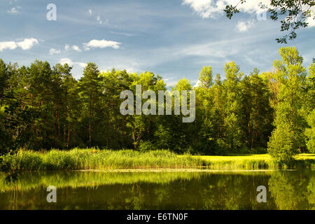 Lake Of The Woods In A Beautiful Place Eastern Europe Stock Photo Royalty Free Image 73052391