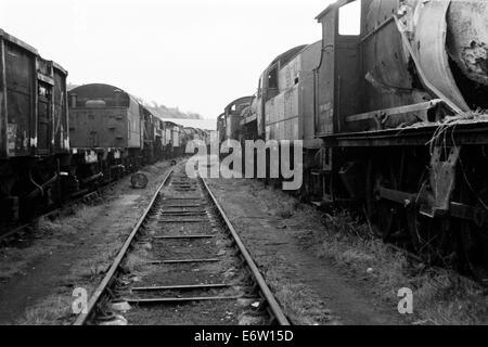scrapped ex british railways steam locomotives at woodhams scrapyard barry island wales in 1974 - Stock Photo
