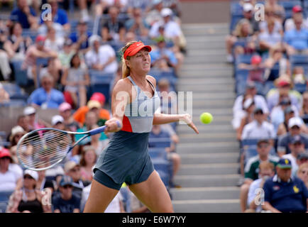 New York, NY, USA. 31st Aug, 2014. Maria Sharapova of Russi returns a shot during the women's singles fourth round - Stock Photo