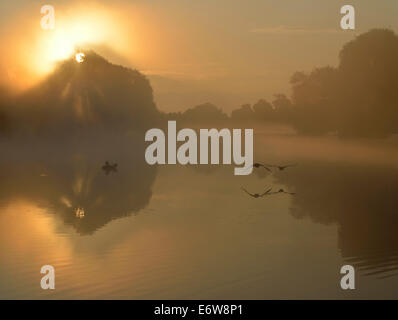 Misty sunrise over Leg of Mutton pond, Bushy Park, London, UK - Stock Photo