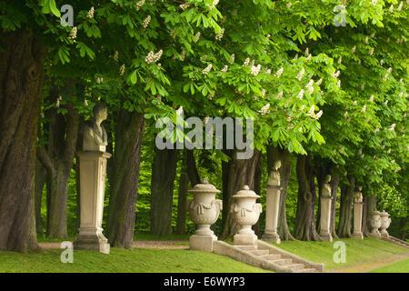 Allee of chestnut trees, Nordkirchen castle, Munsterland, North Rhine-Westphalia, Germany - Stock Photo