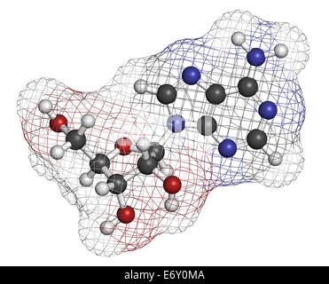 Adenosine (Ado) purine nucleoside molecule. Important component of ATP, ADP, cAMP and RNA. Also used as drug. Atoms - Stock Photo