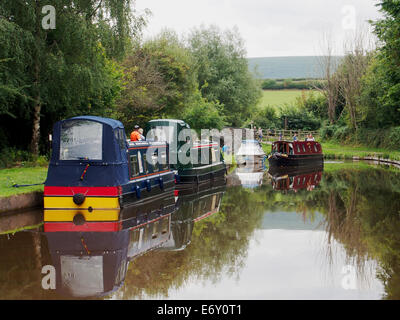 The Monmouthshire & Brecon Canal (Mon & Brec)  - narrow boats moored below Brynich Aqueduct. - Stock Photo