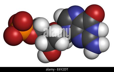 deoxyguanosine, guanin, guanine, dG, ribose, deoxyribose, DNA, nucleoside, deoxyribonucleic, acid, nucleotide, phosphate, - Stock Photo