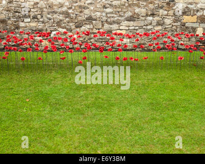 detail of the ceramic poppies exhibit  at the tower of london during heavy rain with the tower wall behind and green - Stock Photo