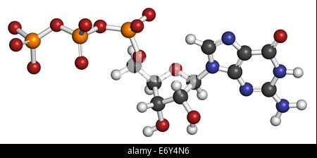 Guanosine triphosphate (GTP) RNA building block molecule. Also used as energy transport molecule and in signal transduction. - Stock Photo