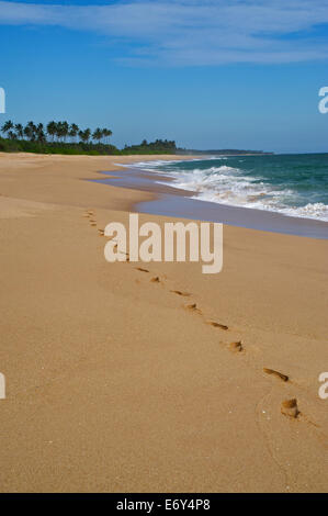 Footprints in the sand along a long deserted beach east of Tangalle, South coast, Sri Lanka, South Asi - Stock Photo