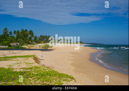 Huts and palm trees on a long deserted sandy beach east of Tangalle, South coast, Sri Lanka, South Asia - Stock Photo