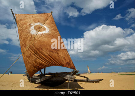 Wooden catamaran with full blown sail on a wide sandy beach at Negombo, North of Colombo, West coast, Sri Lanka, - Stock Photo