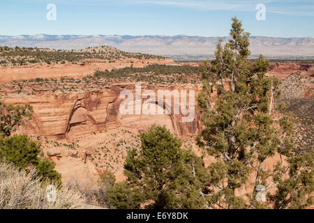 A view from Artists Point in the Colorado National Monument, Colorado, USA - Stock Photo