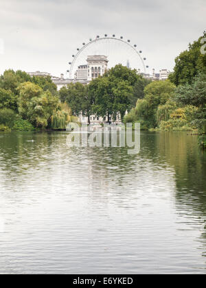 london eye viewed from the blue bridge st james's park london - Stock Photo
