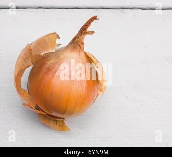 onion on white wooden table - Stock Photo