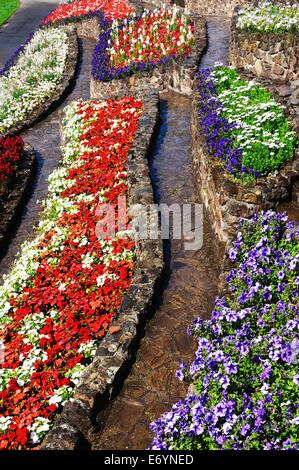 Colourful flowerbeds in the castle gardens, Tamworth, Staffordshire, England, UK, Western Europe. - Stock Photo