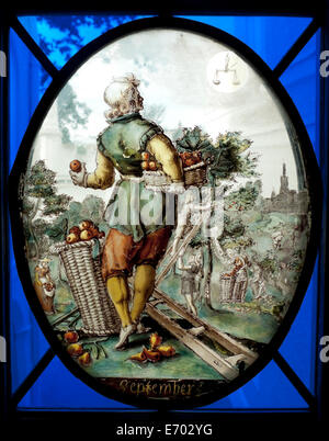Historical stained glass window of man in garden with basket of apples, London UK  KATHY DEWITT - Stock Photo