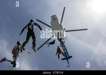 Low angle view of helicopter and six skydivers free falling, Siofok, Somogy, Hungary - Stock Photo