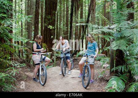 Three mid adult women mountain bikers using smartphones in forest - Stock Photo