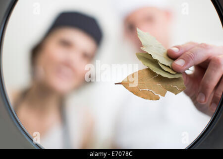 Chefs placing bay leaves into saucepan in commercial kitchen - Stock Photo