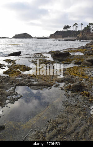 Laguna Tide Pools - Stock Photo