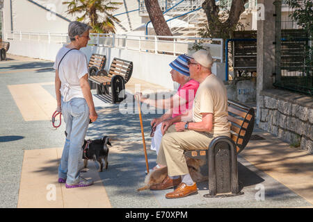 Elderly couple sitting on bench in shade talking to woman walking dog. - Stock Photo