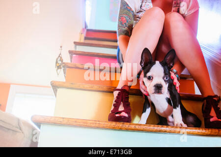Cropped shot of young woman sitting on colorful staircase with dog - Stock Photo