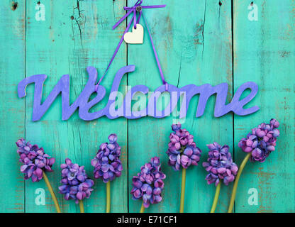 Purple welcome sign with wood heart and spring flowers hanging from ribbon on rustic antique green wooden door - Stock Photo