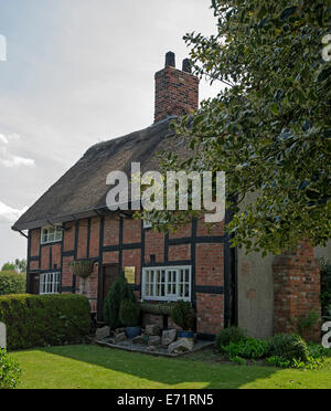 Historic 17th century British pub,The Holly Bush, red brick building with thatched roof near Chirk in Wales - Stock Photo