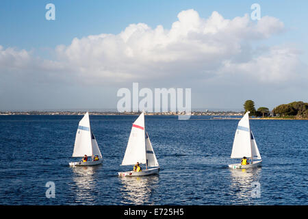 sail boats on Swan River in Perth - Stock Photo