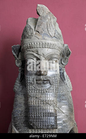 Bust from the archaeological site of Persepolis, National Museum, Tehran, Tehran province, Persia, Iran - Stock Photo