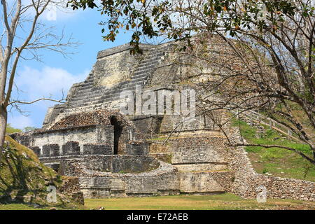 Restored template at the ancient Mayan city of Altun Ha near Belize City. - Stock Photo
