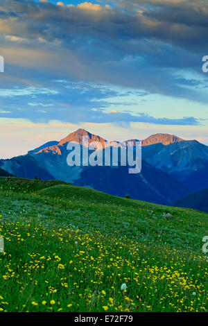 View of mountains and wildflowers from above U.S. Basin, San Juan Mountains, near Silverton, Colorado USA - Stock Photo
