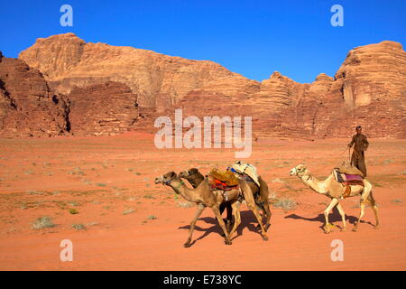 Bedouin and camels, Wadi Rum, Jordan, Middle East - Stock Photo