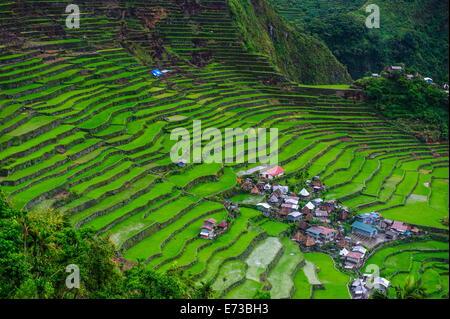 Batad rice terraces, part of the UNESCO World Heritage Site of Banaue, Luzon, Philippines, Southeast Asia, Asia - Stock Photo