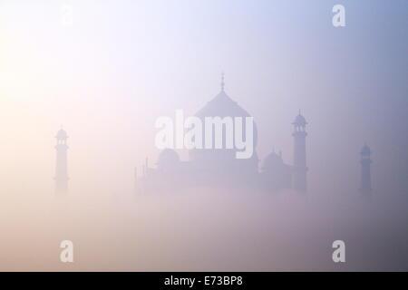 Taj Mahal at dawn, UNESCO World Heritage Site, Agra, Uttar Pradesh, India, Asia - Stock Photo