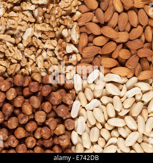 Peanuts, walnuts, almonds and hazelnuts forming a background - Stock Photo